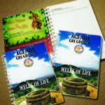 Agenda GBI 2014